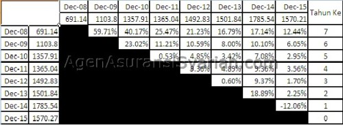 Kinerja Allisya Equity Fund. Dihitung berdasar NAB tanggal 31 Desember dari tahun 2008-2015. Perhitungan return menggunakan Geometric Mean / Annualized Return
